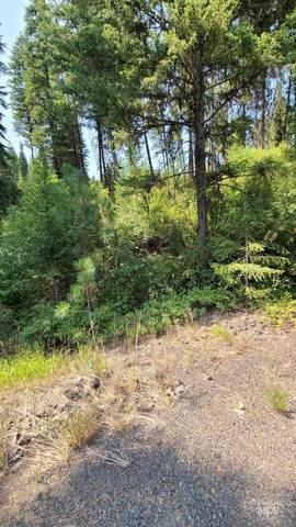 TBD Sorrel Drive, New Meadows, ID 83654 (MLS #98816105) :: Jeremy Orton Real Estate Group