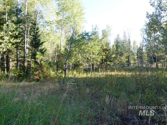 1530 Majestic View Drive, Mccall, ID 83638 (MLS #98817147) :: Scott Swan Real Estate Group