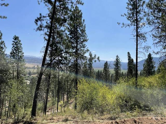 1041 Pine Grove Road, Garden Valley, ID 83622 (MLS #98817152) :: Team One Group Real Estate