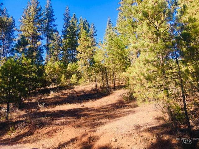 Kimberland Drive, New Meadows, ID 83654 (MLS #98817529) :: First Service Group