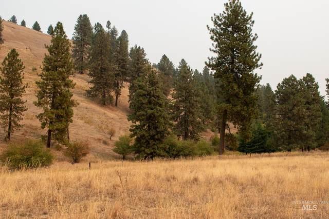 TBD Upper Fords Creek Rd., Orofino, ID 83544 (MLS #98818359) :: Idaho Real Estate Advisors