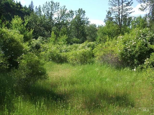 160 &152 Rabbit Creek Rd, Stites, ID 83552 (MLS #98818564) :: Build Idaho