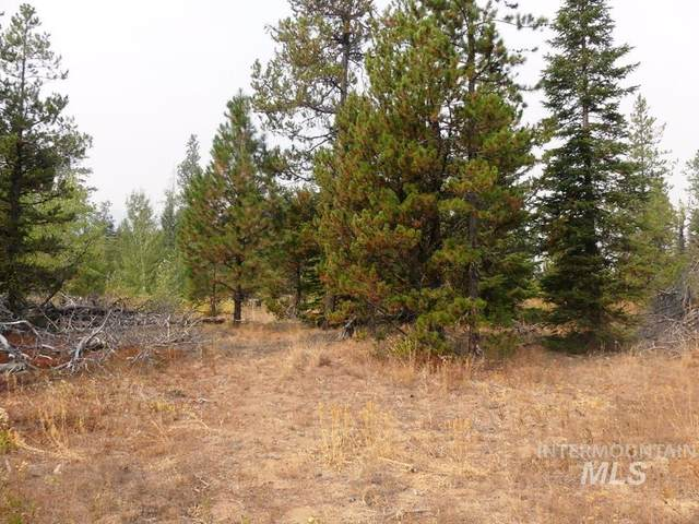 14 Heron's Nest Court, Donnelly, ID 83615 (MLS #98818689) :: Bafundi Real Estate
