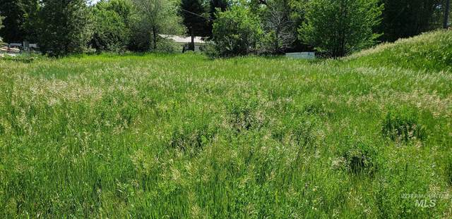 Lot 4 Main Street, Council, ID 83612 (MLS #98819041) :: Boise River Realty