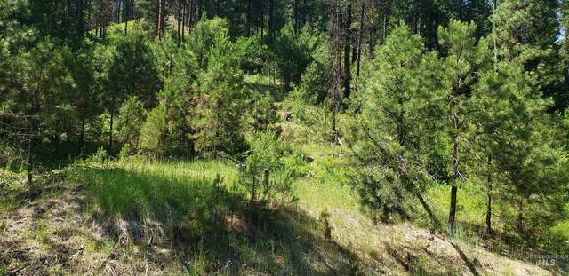 Lot 24 Middle Fork Rd, Garden Valley, ID 83622 (MLS #98819519) :: The Bean Team