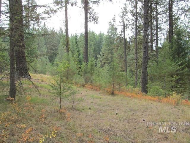 68 Panorama Dr, Cascade, ID 83611 (MLS #98819569) :: Idaho Life Real Estate