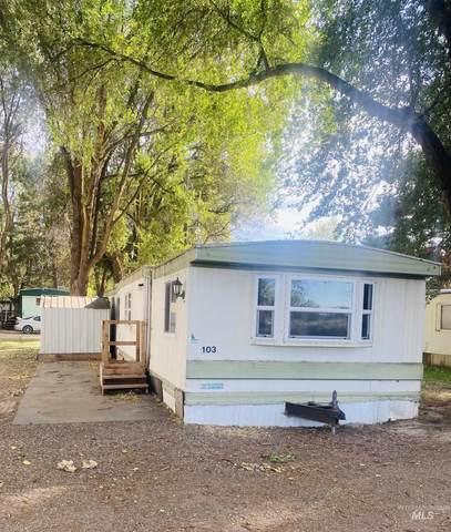 103 SW Cutler Circle, Mountain Home, ID 83647 (MLS #98819581) :: Beasley Realty