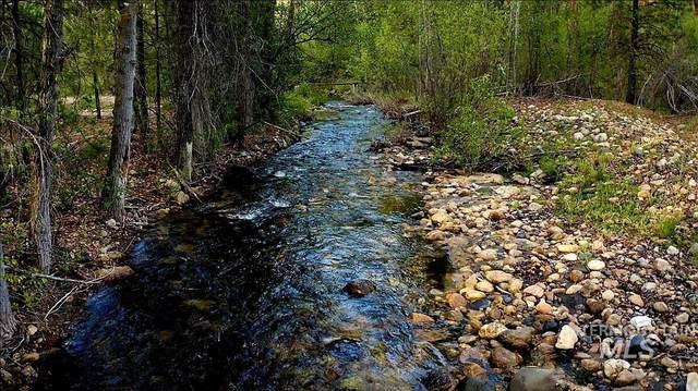 Lot 19, Blk 1 Creekside At Cross Timber Ranch, Garden Valley, ID 83622 (MLS #98819708) :: The Bean Team