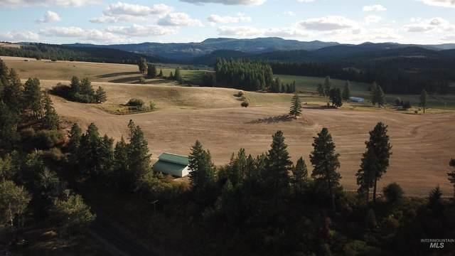 1077 Bear Creek Road, Princeton, ID 83857 (MLS #98819843) :: Build Idaho