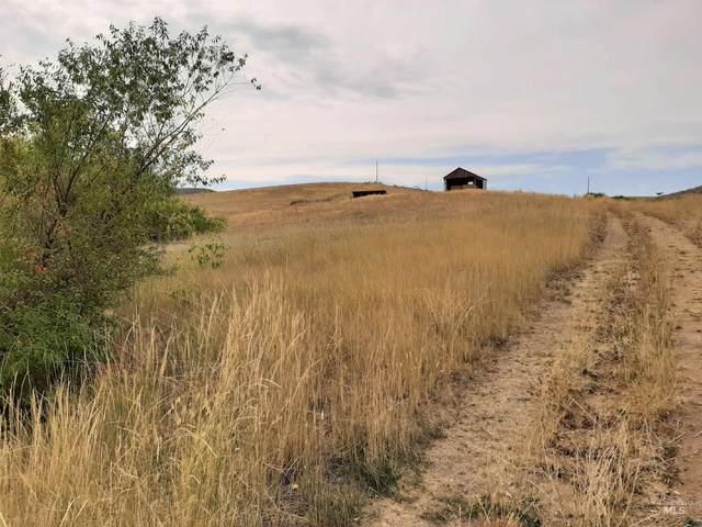 Brownlee Rd, Horseshoe Bend, ID 83629 (MLS #98819881) :: Bafundi Real Estate