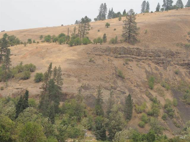 3976 Hwy 13, Stites, ID 83552 (MLS #98820484) :: First Service Group