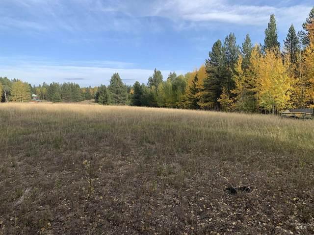 4503 S Elk Loop Rd., Ashton, ID 83420 (MLS #98820588) :: Idaho Life Real Estate