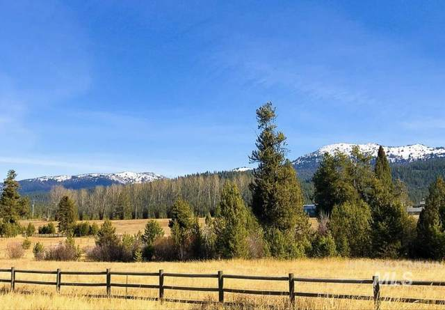 13795 Sweet Iron Court, Mccall, ID 83638 (MLS #98820955) :: First Service Group