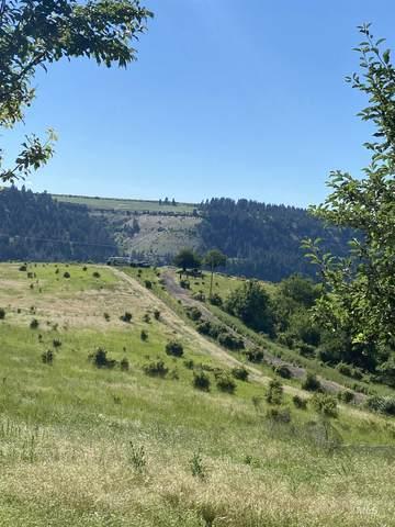 TBD Sears Creek, Grangeville, ID 83530 (MLS #98821224) :: Boise River Realty