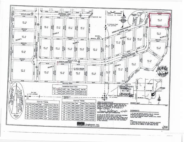 265 Apache Plume Way, Shoshone, ID 83352 (MLS #98822014) :: Beasley Realty