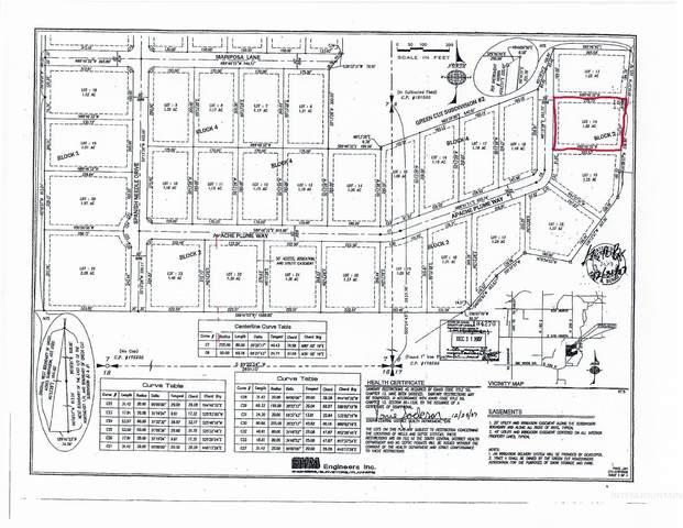 263 Apache Plume Way, Shoshone, ID 83352 (MLS #98822015) :: Silvercreek Realty Group