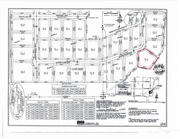 259 Apache Plume Way, Shoshone, ID 83352 (MLS #98822019) :: Beasley Realty