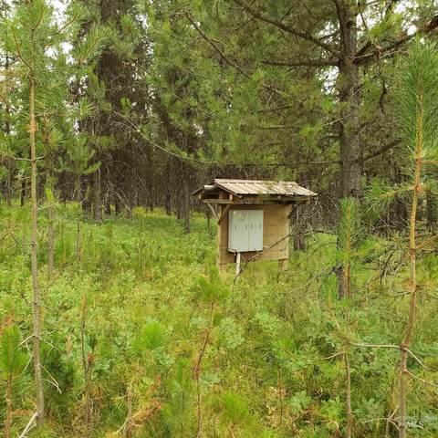TBD Elk Creek Road, Elk City, ID 83525 (MLS #98822089) :: The Bean Team