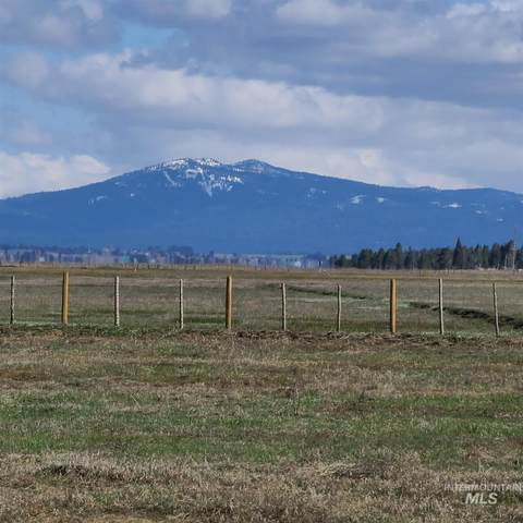 1810 Schultz Road, Donnelly, ID 83615 (MLS #98822111) :: Epic Realty