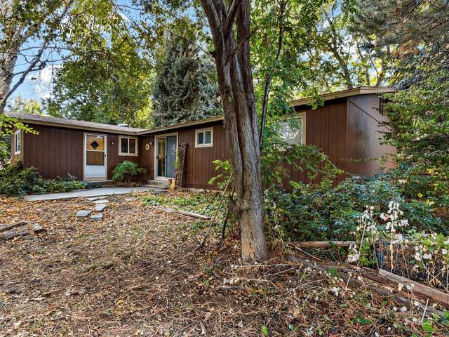 3011 S 10th Ave, Caldwell, ID 83605 (MLS #98822574) :: Epic Realty