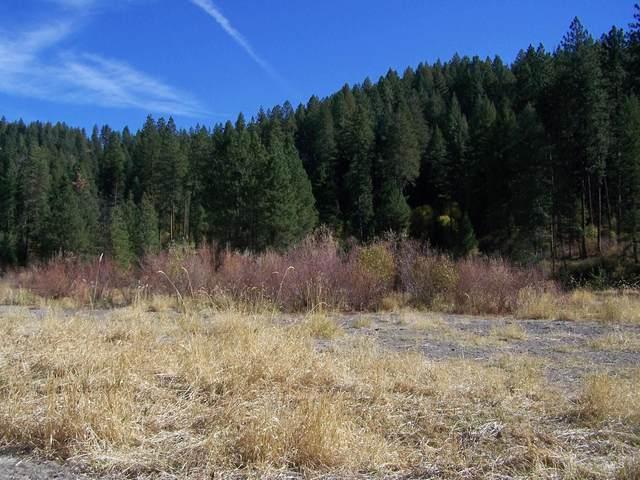 TBD Peaceful Pines Rd Lot 13, Council, ID 83612 (MLS #98822660) :: Jon Gosche Real Estate, LLC