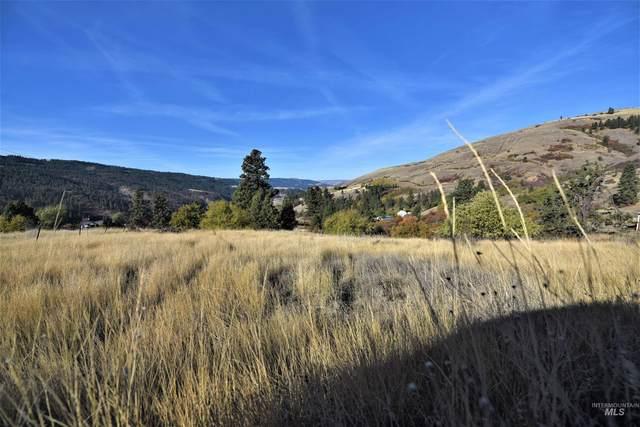 000 Sunnyside Bench Rd, Lenore, ID 83541 (MLS #98822682) :: Idaho Real Estate Advisors
