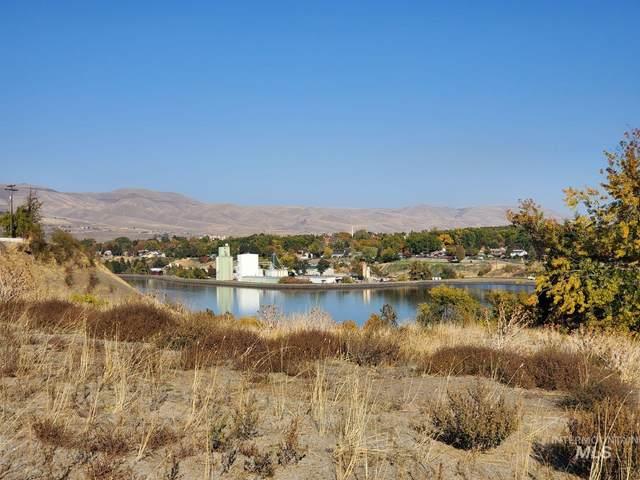 424 Teresa Ct, Clarkston, WA 99403 (MLS #98822943) :: Idaho Life Real Estate
