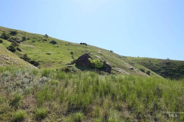 19745 N Smokeys Draw Place, Boise, ID 83714 (MLS #98823069) :: Build Idaho