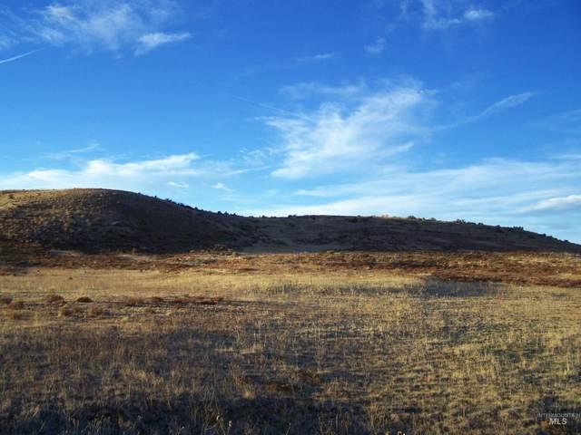 TBD Mesa Siding Rd, Council, ID 83612 (MLS #98823143) :: Minegar Gamble Premier Real Estate Services