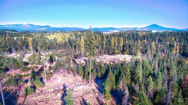 00A Anderson Road, Deary, ID 83823 (MLS #98823232) :: Full Sail Real Estate