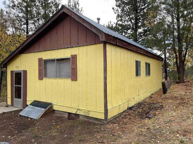979 N Pine Featherville Rd, Pine, ID 83647 (MLS #98823341) :: Minegar Gamble Premier Real Estate Services