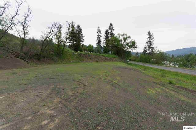 lot 1 River View Estates, Kamiah, ID 83536 (MLS #319106) :: Boise River Realty