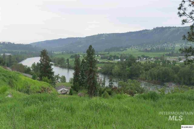 lot 11 River View Estates, Kamiah, ID 83536 (MLS #319113) :: Boise River Realty