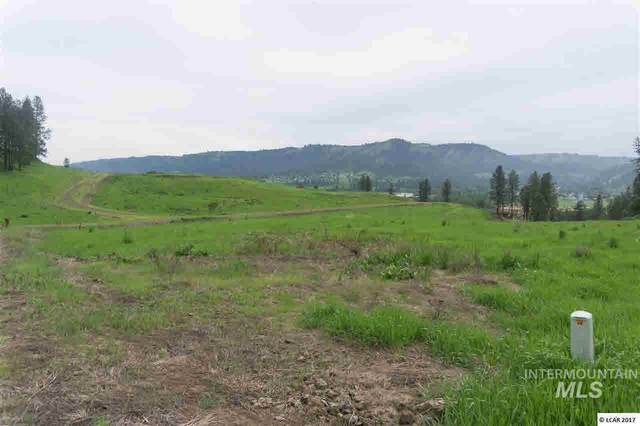 lot 14 River View Estates, Kamiah, ID 83536 (MLS #319114) :: Silvercreek Realty Group