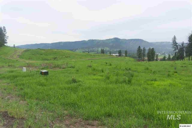 lot 16 River View Estates, Kamiah, ID 83536 (MLS #319116) :: Boise River Realty