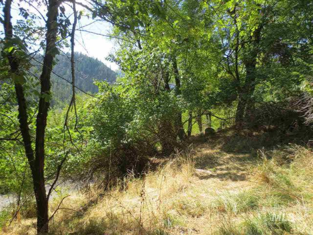 1540 Ellis Avenue, Orofino, ID 83544 (MLS #319736) :: Full Sail Real Estate