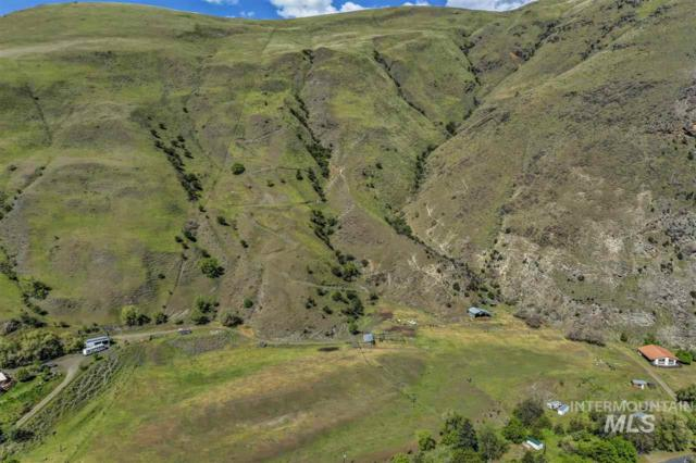 699 Old Pollock Road, Riggins, ID 83549 (MLS #322203) :: Boise River Realty