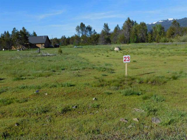 161 Meadow Place, Donnelly, ID 83615 (MLS #98174454) :: Juniper Realty Group