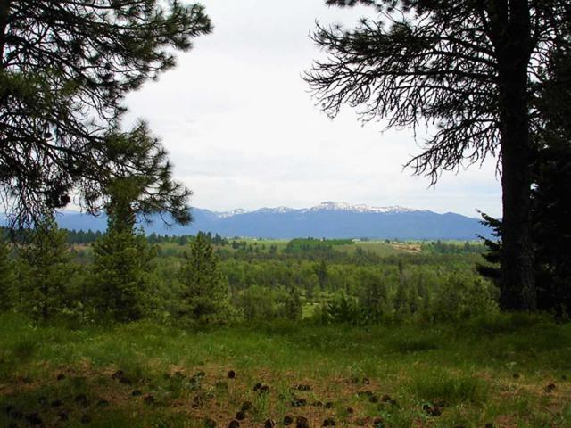 TBD North Wood Court, Mccall, ID 83638 (MLS #98653247) :: Zuber Group