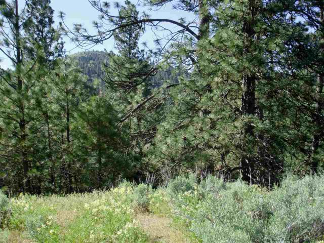 0 Kelly Gulch Road, Idaho City, ID 83631 (MLS #98668156) :: Build Idaho