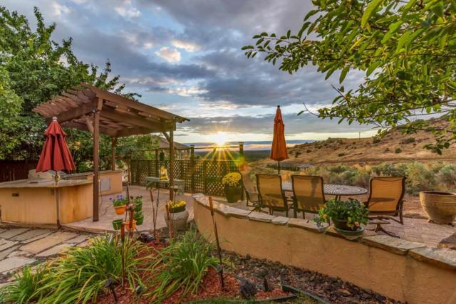 1655 S Wind Dancer, Boise, ID 83712 (MLS #98671698) :: We Love Boise Real Estate