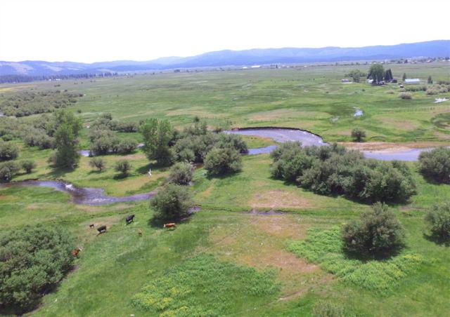 0 Farrell Road, New Meadows, ID 83654 (MLS #98676968) :: Team One Group Real Estate