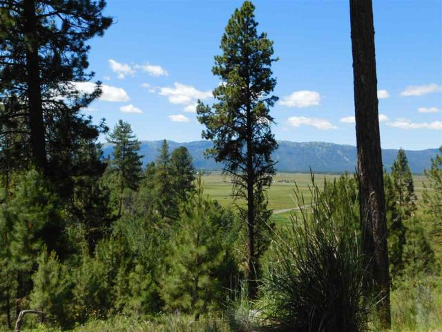 TBD Chisum Drive, Donnelly, ID 83615 (MLS #98678612) :: Full Sail Real Estate