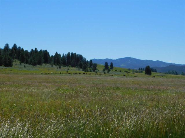 7 Ringo Lane, Donnelly, ID 83615 (MLS #98678621) :: Full Sail Real Estate