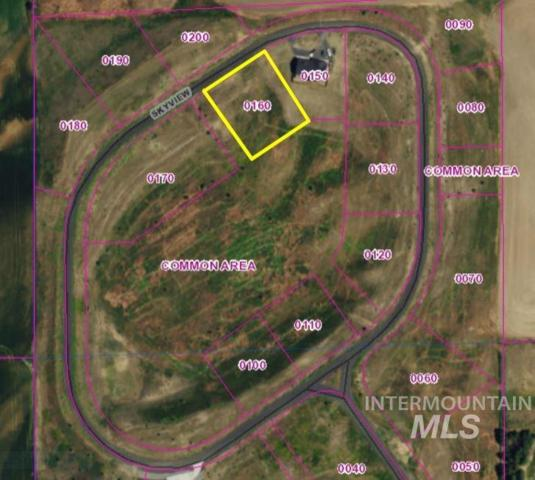 TBD Sky View Loop (Lot 16), Moscow, ID 83843 (MLS #98678981) :: Boise River Realty