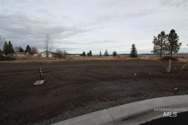 530 Maple Court, Genesee, ID 83832 (MLS #98680389) :: New View Team