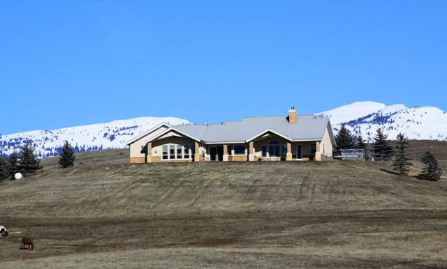 2346 Meadows Lane, Indian Valley, ID 83632 (MLS #98682341) :: Boise River Realty