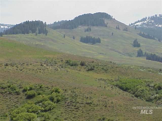 TBD Middle Fork, Council, ID 83612 (MLS #98682705) :: The Bean Team