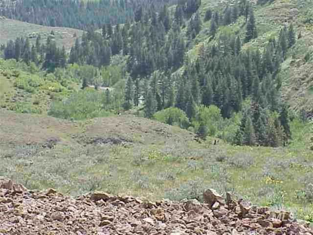 Lot 4 Middle Fork Rd, Council, ID 83612 (MLS #98682709) :: Epic Realty
