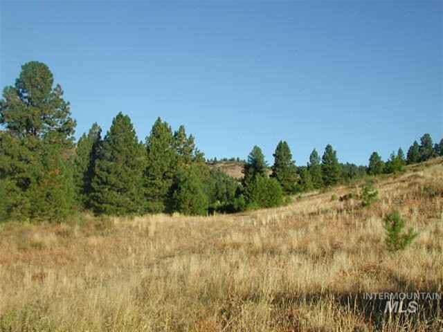 Lot 110 Gold Fork Ridge Road, Boise, ID 83716 (MLS #98682722) :: Idaho Real Estate Pros